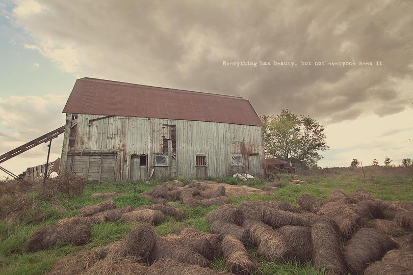 abandoned barn, countryside art, hamilton ontario
