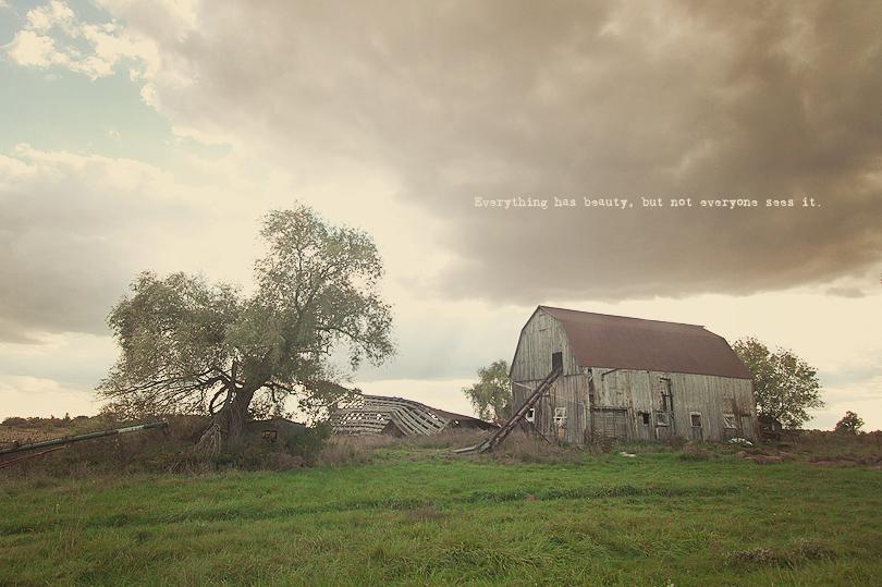 abandoned barn, hamilton ontario