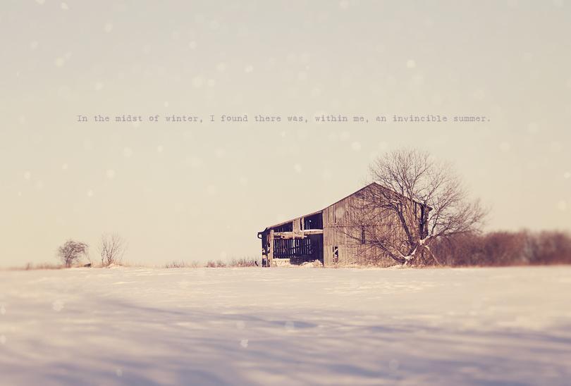 winter wonderland, toronto, canada, winter photography