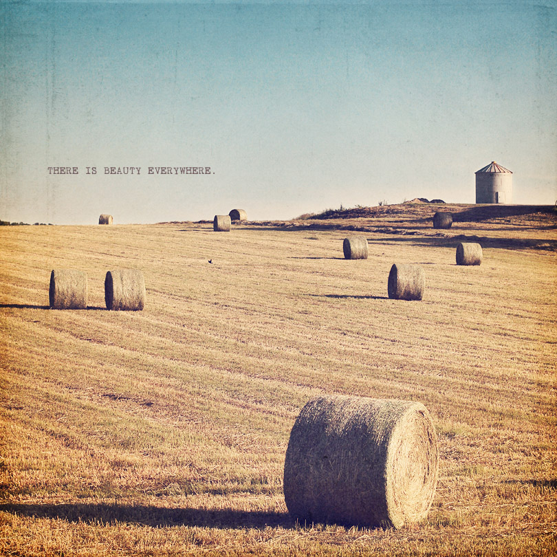 countrside landscape photography with vintage love. print available at chapters indigo canada.