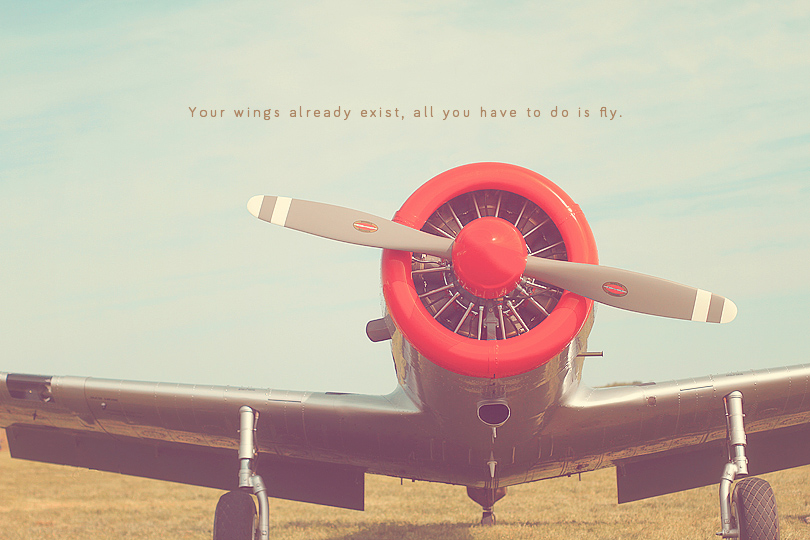 airplane photography, aviation quotes, airplane prints, airplane art, airplane photo, gift for pilot