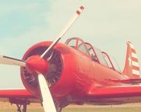 Red & Rad Plane