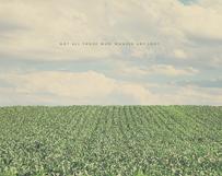 Green Field of Wonder