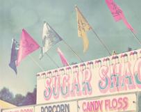 Pink Sugar Shack