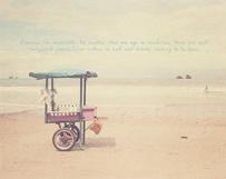 Beach Food Cart