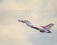 American Thunderbird