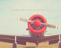 Fly Sky High