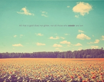 Sunflowers Bloom